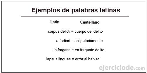 Ejemplos-de-palabras-latinas