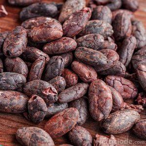 Chocolate originario de México
